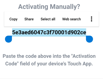 Activate_Manually_Copy.png